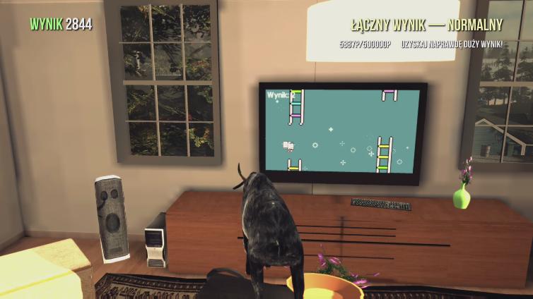 Romario91 PL playing Goat Simulator